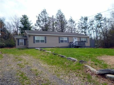 Mountain Dale Single Family Home For Sale: 194 Fox Hill Road