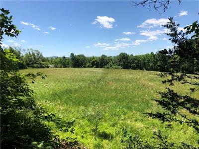 Warwick Residential Lots & Land For Sale: 56 Maple Avenue