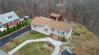 Westchester County Single Family Home For Sale: 45 Hollowbrook Lane