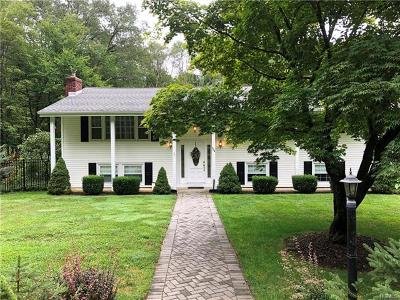 Chester Single Family Home For Sale: 234 Bull Mill Road