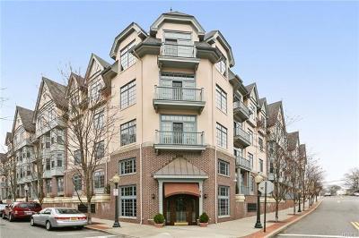 Pelham Condo/Townhouse For Sale: 55 1st Street #204