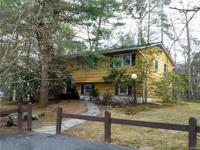Sullivan County Single Family Home For Sale: 21 Chester Street