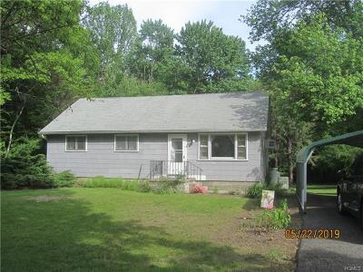 Pine Bush Single Family Home For Sale: 95 Basel Road