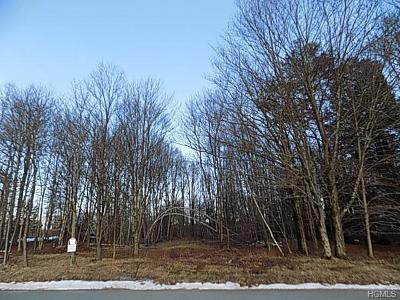 Bethel Residential Lots & Land For Sale: Lt. Brender Hwy