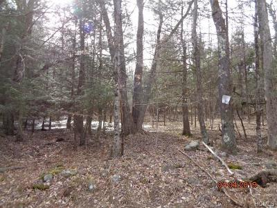 Bethel NY Residential Lots & Land For Sale: $44,900