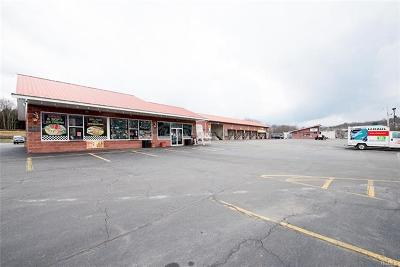 Liberty Commercial For Sale: 1855 State Route 52