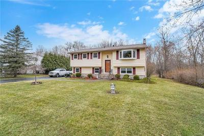 Washingtonville Single Family Home For Sale: 141 Barnes Road