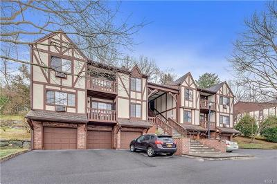 Westchester County Condo/Townhouse For Sale: 93 Foxwood Circle