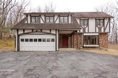Chester Single Family Home For Sale: 124 Dug Road