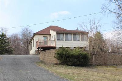 Fallsburg Single Family Home For Sale: 323 Park Hill Road Tr 56