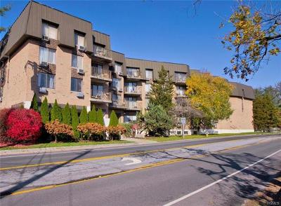Harrison Condo/Townhouse For Sale: 560 Halstead Avenue #4B