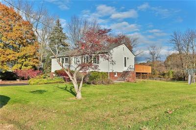 West Nyack Single Family Home For Sale: 54 Klein Avenue