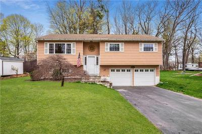Dutchess County Single Family Home For Sale: 50 Robin Road