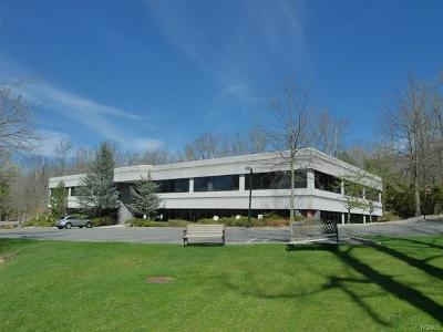 Rockland County Commercial For Sale: 26 Firemens Memorial Drive #111