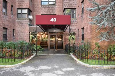 Mount Vernon Rental For Rent: 40 Fleetwood Avenue #5B
