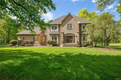 Goshen Single Family Home For Sale: 6 Darlene Drive