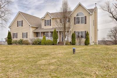 Middletown Single Family Home For Sale: 512 County Route 49
