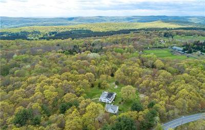 Dutchess County Single Family Home For Sale: 1107 Old Quaker Hill Road