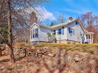 Pine Bush Single Family Home For Sale: 894 Upper Mountain Road
