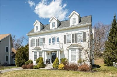 Ossining Single Family Home For Sale: 9 Birch Court