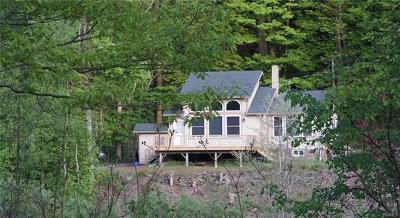 Delaware County Single Family Home For Sale: 455 Peas Eddy Road