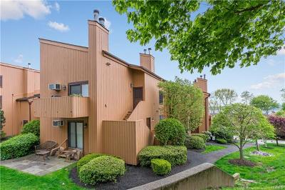 Ossining Condo/Townhouse For Sale: 12 Hudson View Hill
