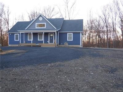 Wallkill Single Family Home For Sale: 21 Madre De Cristo Road