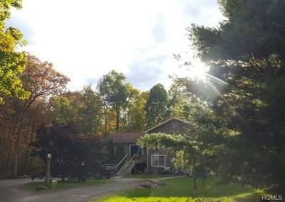 Dutchess County Single Family Home For Sale: 8 Woodland Court