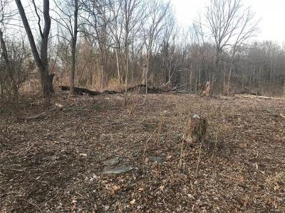 Newburgh Residential Lots & Land For Sale: Colden Hill Road Es