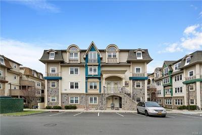 Spring Valley Condo/Townhouse For Sale: 12 Elm Street #311