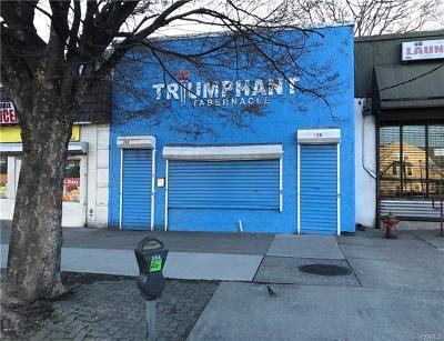 Commercial For Sale: 266 Riverdale Avenue