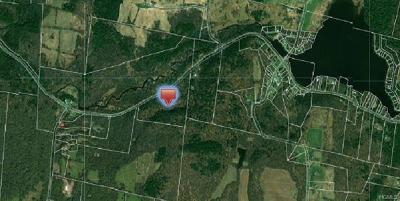 Bethel Residential Lots & Land For Sale: Briscoe Road