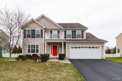 Dutchess County Single Family Home For Sale: 44 Plum Court Drive