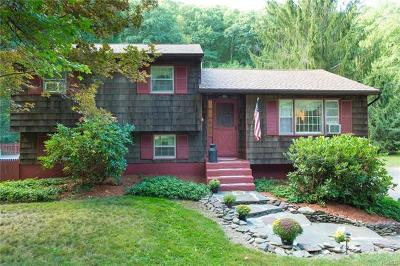 Dover Plains Single Family Home For Sale: 768 Route 343