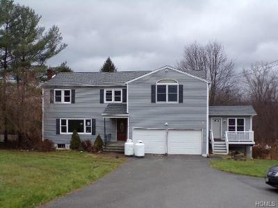 Dutchess County Single Family Home For Sale: 11 Ohare Drive
