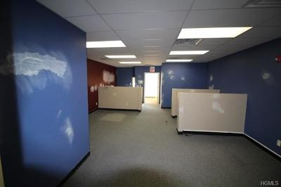 Monticello Commercial For Sale: 457 Broadway