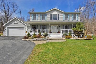 Pine Bush Single Family Home For Sale: 57 Sheldon Road
