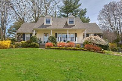 Westchester County Single Family Home For Sale: 233 Lake Street