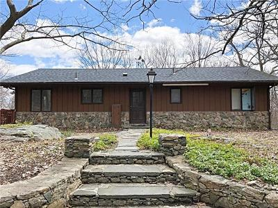 Dutchess County Single Family Home For Sale: 356 Woodmont Road