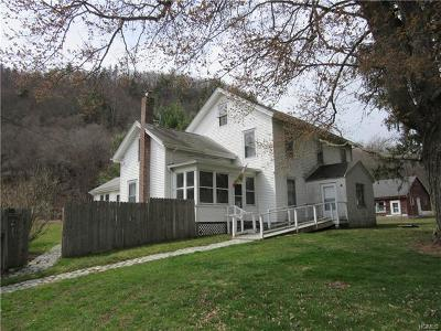 Dutchess County Single Family Home For Sale: 383 Old Pawling Road