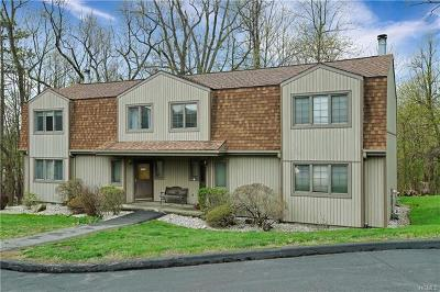 Westchester County Condo/Townhouse For Sale: 17 Meadowlark Circle #17