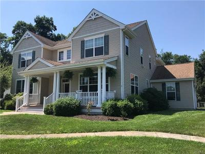 Dutchess County Single Family Home For Sale: 14 Sassafras Circle