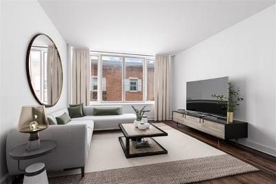 New York Condo/Townhouse For Sale: 5 Franklin #6A