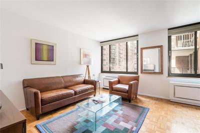 New York Condo/Townhouse For Sale: 300 Albany Street #6O