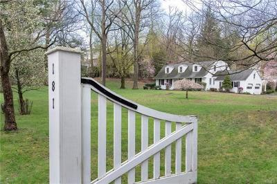 Tappan Single Family Home For Sale: 181 Old Tappan Road