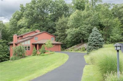 Westchester County Single Family Home For Sale: 9 Hixon Road
