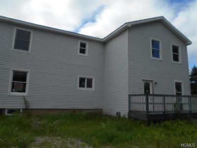 Millerton Single Family Home For Sale: 41 Beilke Road