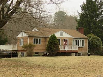 Putnam County Single Family Home For Sale: 3669 Route 301