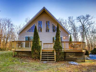 Wurtsboro Single Family Home For Sale: 1273 Wurtsboro Mountain Road