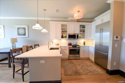 Westchester County Rental For Rent: 11 River Street #410
